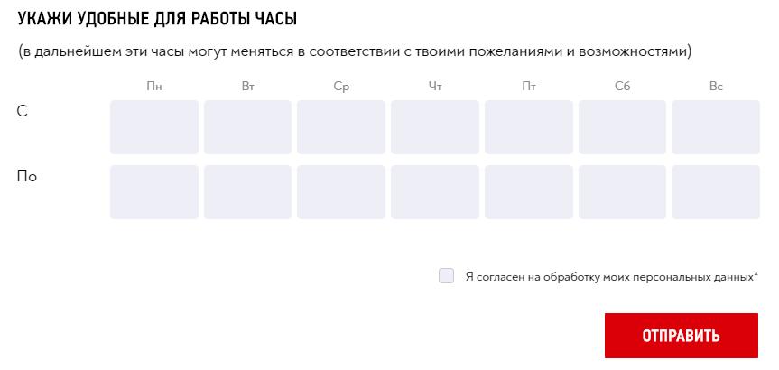 Макдональдс анкета соискателя 3